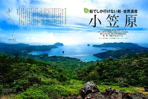 cruise_11_ogasawara.jpg
